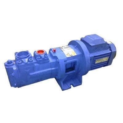 Castle Pumps BTHM38D4 Horizontal Self Priming Screw Pump with Safety valve
