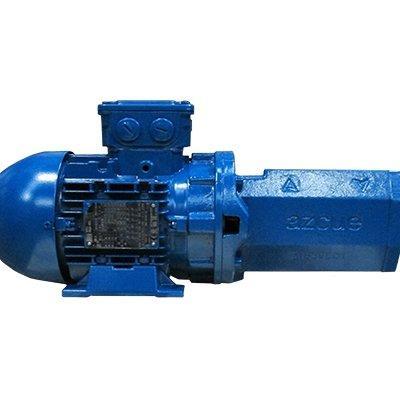 Castle Pumps BTMB25D Horizontal Self Priming Screw Pump with Safety valve
