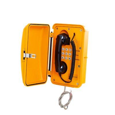 Zenitel KNSP-01 Heavy Duty Telephone with Door